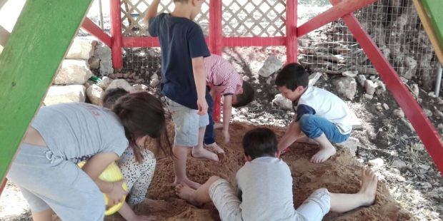 Fun in the sand pit and interacting with our fun animals.