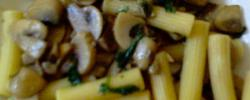 Rigatoni ai funghi ( pasta with mashrooms )